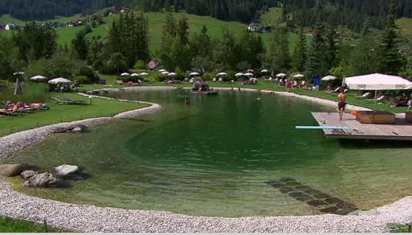Immersi nell\'acqua e nella natura nel lago-biotopo di ...
