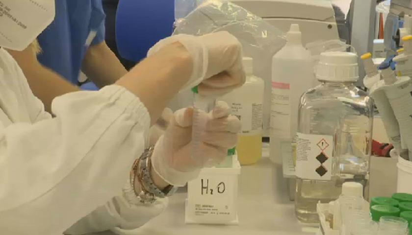 Un laboratorio Covid