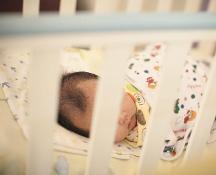 Storica decisione a Trento: sì alle genitorialità per una coppia di papà