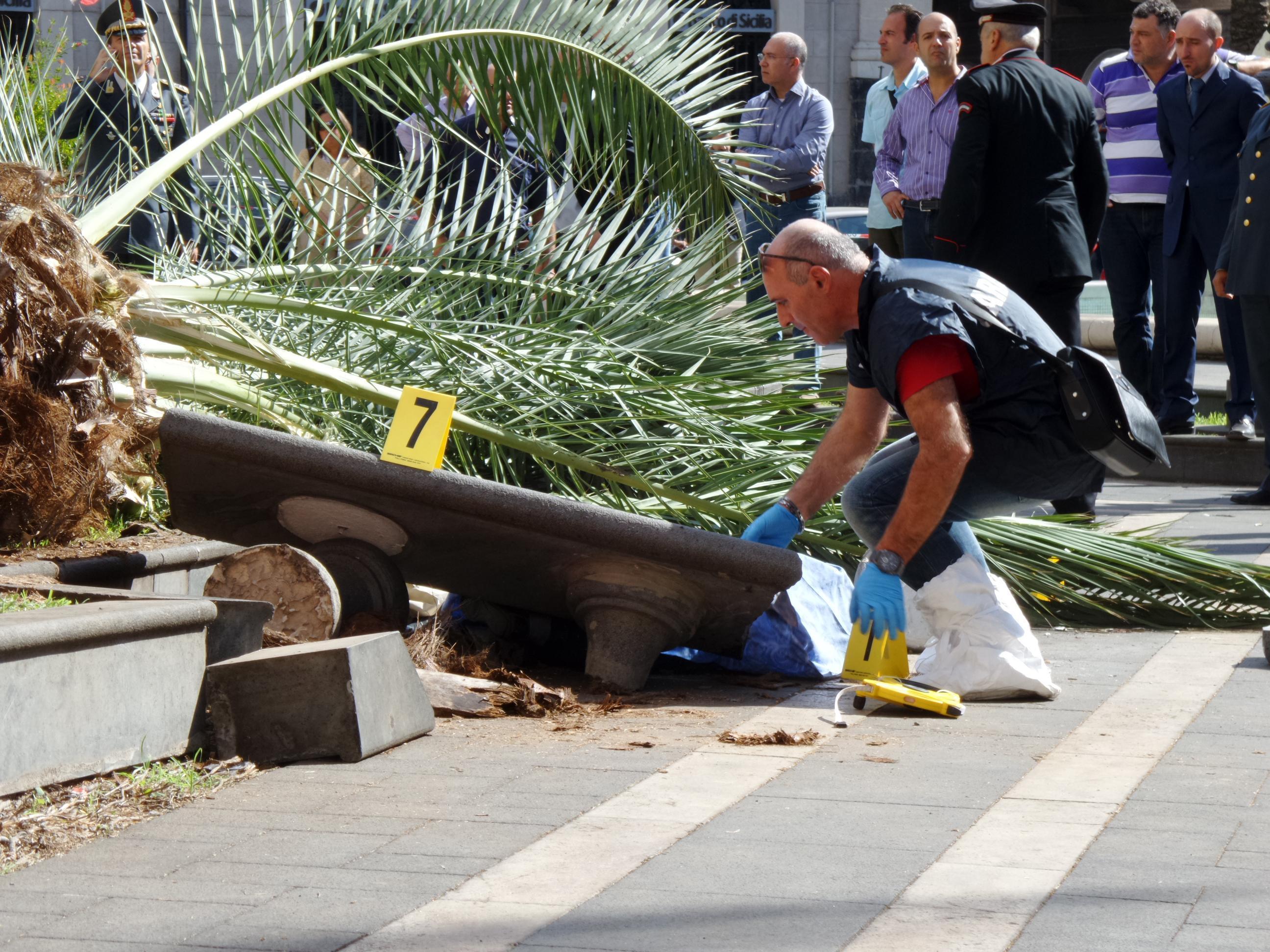 Catania, donna uccisa dalla caduta di una palma$