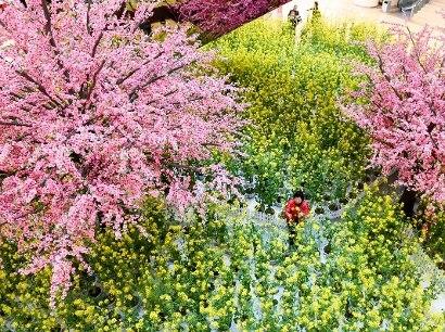 I colori della primavera (LaPresse)