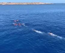 Un porto sicuro per i migranti. Open Arms: Algeciras troppo lontana. Madrid offre le Baleari