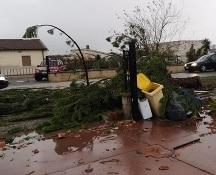 Maltempo: tromba d'aria nel Metapontino, chiuse scuole a Matera e in molte altre città