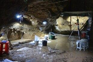 Scoperti resti più antichi Homo sapiens in Europa